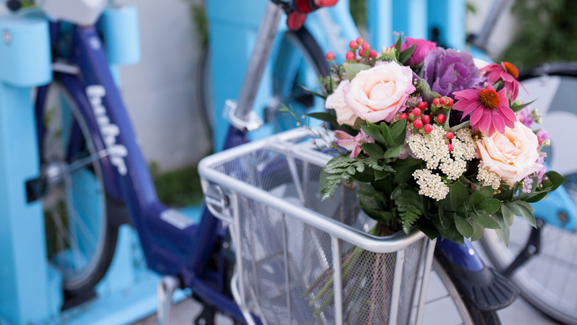 Arrangement & Bubler Bikes